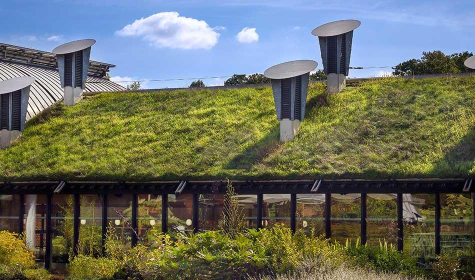 Der Fernstudiengang Master Green Architecture